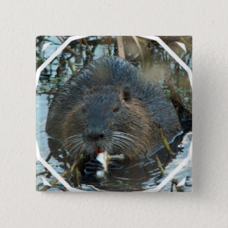 Beavers Habitat Square Pin