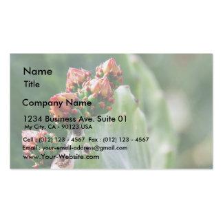 Beavertail Cactus Business Card Template