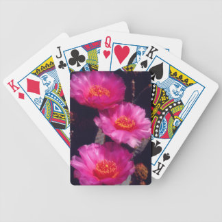 Beavertail Cactus Flowers 2 Bicycle Playing Cards
