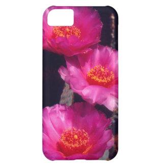 Beavertail Cactus Flowers 2 iPhone 5C Case