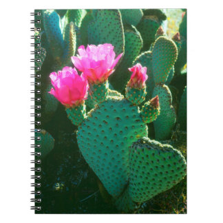 Beavertail Cactus Flowers Notebook