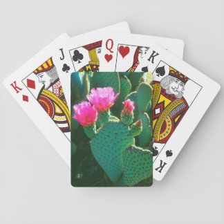 Beavertail Cactus Flowers Playing Cards