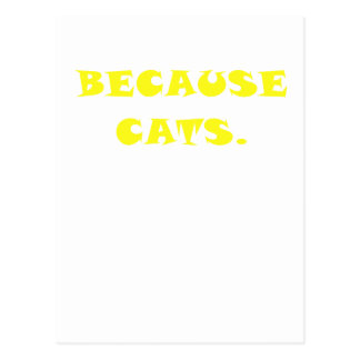 Because Cats Postcard