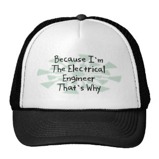 Because I m the Electrical Engineer Mesh Hat