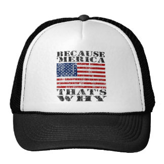 BECAUSE 'MERICA THAT'S WHY Distressed US FLAG Hat