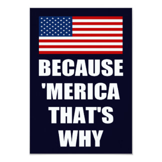 Because 'MERICA That's Why Patriotic Party Invites