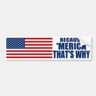 BECAUSE 'MERICA THAT'S WHY US Flag Bumper Sticker