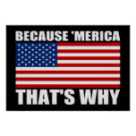 BECAUSE 'MERICA THAT'S WHY US Flag Poster (small)