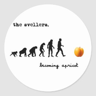 becoming apricot light classic round sticker