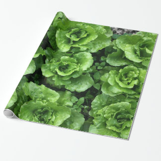 Bed of lettuce wrapping paper