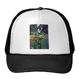 Bed Of Tulips And Daffodils W Tree flowers Trucker Hat