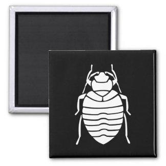 Bedbug Insect Print Magnet