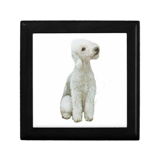 Bedlington Terrier (A) Gift Box