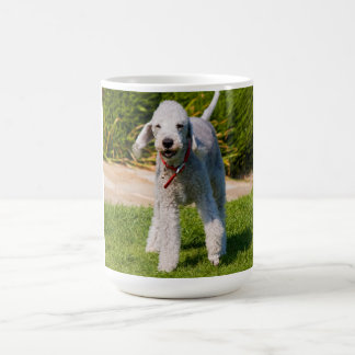 Bedlington Terrier dog cute beautiful photo Basic White Mug