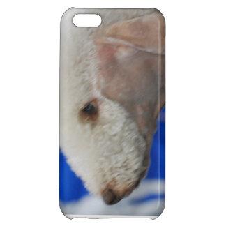Bedlington Terrier Case For iPhone 5C