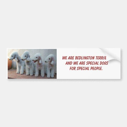 Bedlingtons and Special Bumper Sticker