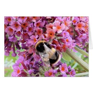 Bee and buddleia card