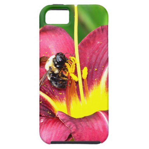Bee and Daylily iPhone 5 Cover