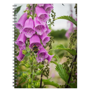 Bee and Foxgloves Notebooks