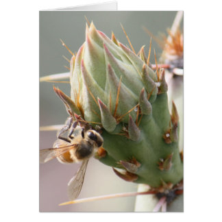 Bee and Prickly Pear Card