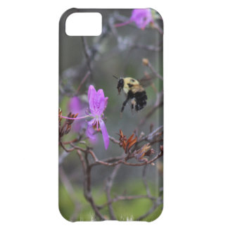 Bee and Wildflower iPhone 5C Case