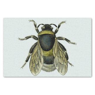"Bee antique illustration 10"" x 15"" tissue paper"