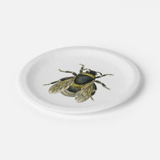 Bee antique illustration 7 inch paper plate