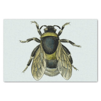 Bee antique illustration tissue paper