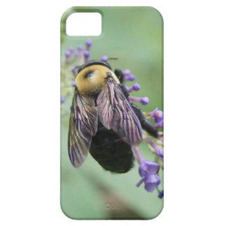 Bee-autiful Bee! iPhone 5 Cases