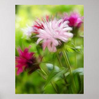 Bee Balm (Monarda) Flowers - Abstract Posters
