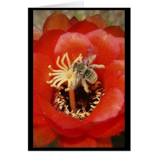 Bee breakfast card