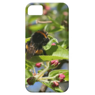 Bee bum Iphone Case iPhone 5 Covers