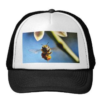 Bee Buzzing Around The Lemon Tree On My Balcony Trucker Hat