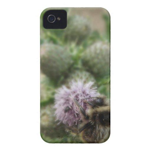 Bee Case-Mate iPhone 4 Case