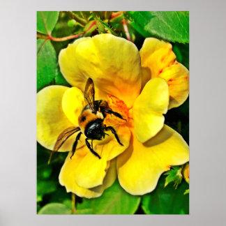 Bee Challenge Poster