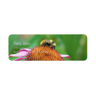 Bee Echinacea Return Address Label
