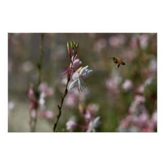 Bee flying to flowers poster