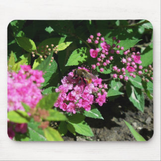 Bee Gathering Pollen Mouse Pad