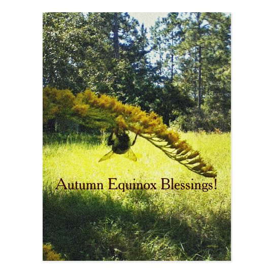 Bee & Goldenrod Autumn Equinox Mabon Postcard