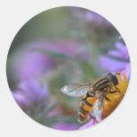 Bee happy round sticker
