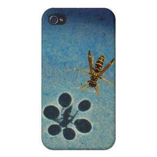 bee hexagon iPhone 4/4S covers