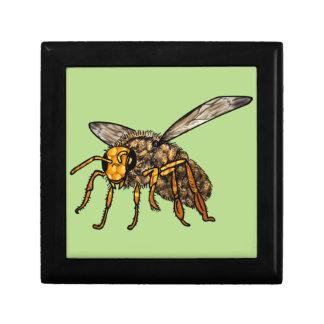Bee Hive in Bee Gift Box