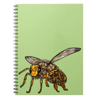 Bee Hive in Bee Notebooks