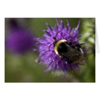 Bee III Card