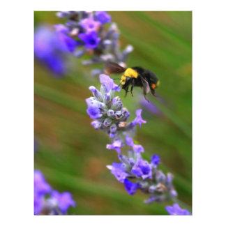 Bee in Lavender 21.5 Cm X 28 Cm Flyer