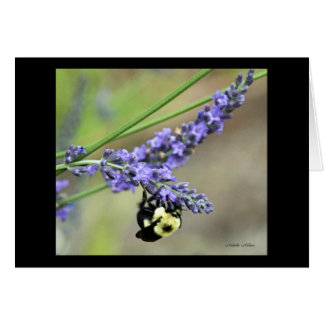 Bee in Lavender Card