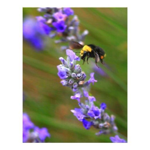 Bee in Lavender Flyer