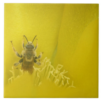 Bee Inside Prickly Pear Cactus Flower Tile