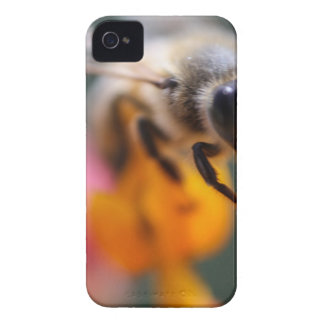 Bee iPhone 4 Covers