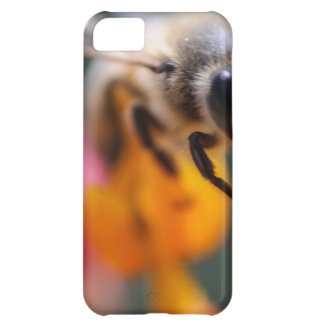 Bee iPhone 5C Covers